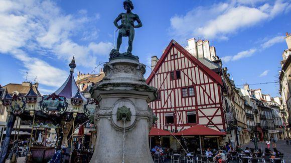 Astel Paysage Dijon