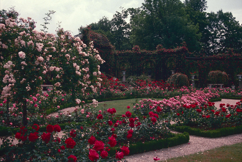 an paysage L'Haÿ-les-Roses